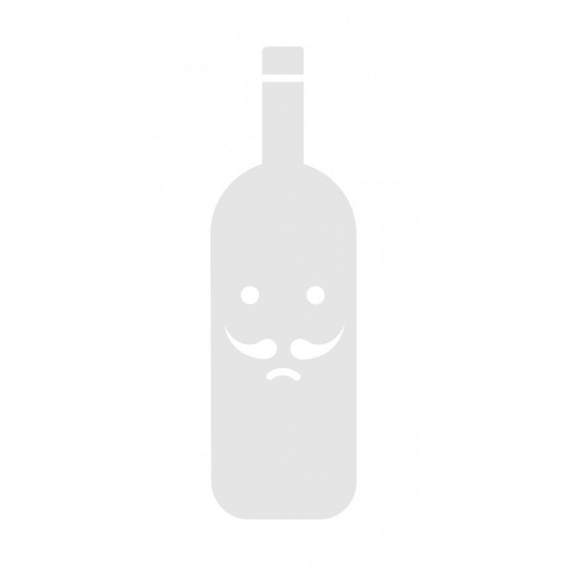 Gosling - Ginger Beer Cl33x24 Lattina